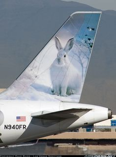 Schneehase am Seitenruder 🐰🐇 Commercial Plane, Commercial Aircraft, Drones, International Civil Aviation Organization, Aircraft Painting, Air Festival, Airplane Art, Aircraft Pictures, Nose Art