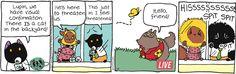 Breaking Cat News by Georgia Dunn for May 6, 2017   Read Comic Strips at GoComics.com
