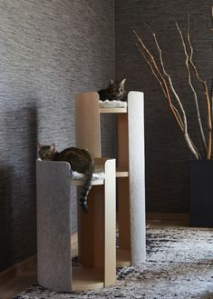 MiaCara - The German Design Label for innovative & sophisticated dog and cat products for a beautiful living with your dog and cat. Pet Furniture, Modern Cat Furniture, Modern Cat Beds, Luxury Furniture, Cat Shelves, Cat Playground, Cat Scratching Post, Cat Room, Cat Condo