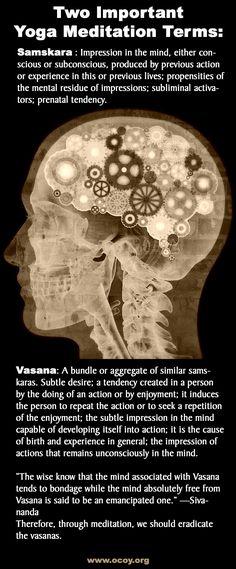 Two important terms for meditators: samskara and vasana