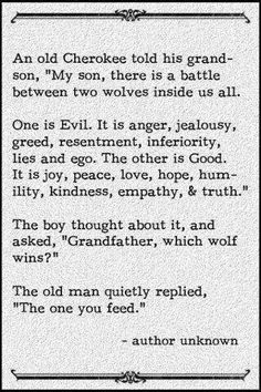Think about the decisions that you make.... Feed the good not the evil....