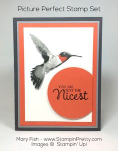 "Say ""thank you"" with this layered hummingbird using Picture Perfect stamp set.  Thank you card created by Mary Fish, Independent Stampin' Up! Demonstrator.  Details, supply list and more card ideas on http://stampinpretty.com/2015/12/a-preview-of-stampin-up-picture-perfect.html"