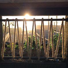 Patio costero Renata / Lotecircular Balustrades, Banisters, Rope Fence, Garden Lighting Diy, Bethany House, Patio Railing, Cozy Backyard, Garden Landscape Design, Garden Gates