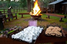 Smore bar at the reception...oh we are doing this :)