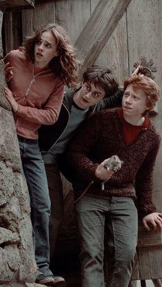Harry Potter Tumblr, Harry James Potter, Harry Potter Hermione, Harry Potter World, Estilo Harry Potter, Mundo Harry Potter, Harry Potter Pictures, Harry Potter Fandom, Harry Potter Characters