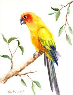 Sun Conure - Original Watercolor, [L] Watercolor Feather, Easy Watercolor, Watercolor Animals, Watercolour, Watercolor Paintings For Beginners, Bird Artwork, Conure, Tropical Birds, Color Pencil Art