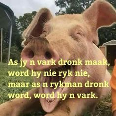 Afrikaans Quotes, Love Life, Humor, Words, Funny, Animals, Knits, Top, Animales