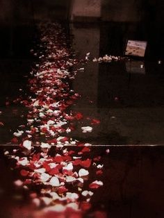 It's hard to imagine that is has already been two years since the day of rose pedals, candles, scripture, surprises, etc.