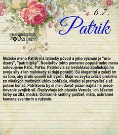 Janina, Ivana, Words, Horse
