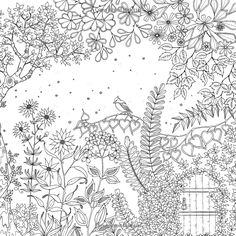Secret Garden: An Inky Treasure Hunt and Coloring Book: Johanna Basford: 9781780671062: Amazon.com: Books Garden Coloring Pages, Secret Garden Colouring, Coloring Pages For Grown Ups, Free Coloring Pages, Printable Coloring Pages, Doodle Coloring, Mandala Coloring, Coloring Sheets, Coloring Books