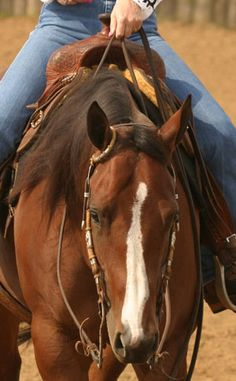 how to hold the reins properly
