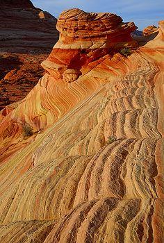 The Wave, Paria Canyon-Vermiliion Cliffs
