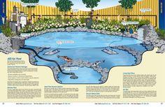 Pond catalog