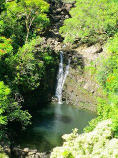 Hawaii 2014 Garden of Eden on the road to Hana (mm 10) in Maui the Puohokamoa Falls
