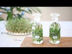 『ローズマリーチンキの作り方』若返りの水ハンガリーウォーターにも使われるローズマリーでハーブチンキを作ろう - YouTube Glass Vase, Youtube, Decor, Decoration, Decorating, Youtubers, Youtube Movies, Deco