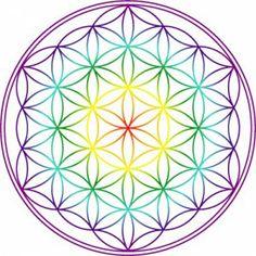 Fleur de vie (autocollants) Reiki, Dot Art Painting, Flower Of Life, Op Art, Mandala Art, Sacred Geometry, Feng Shui, Pencil Drawings, Zentangle