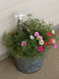 Happy portulaca in a faucet planter crafted from an old USDA bucket and a salvaged faucet.