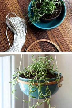 Use a dollar store bowl, embroidery hoop, and cord to create this trendy hanging succulent planter. Quick and easy hanging planter on a budget. How to make a hanging planter for cheap. Indoor Planters, Flower Planters, Planter Boxes, Planter Ideas, Concrete Bowl, Modern Plant Stand, Diy Couch, Hanging Succulents, Succulent Wall