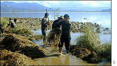 Another very important jobs of only adults is rebuilding banks of washed out rivers. This allows easier fishing when needed and other necessary things as well. Life In North Korea, Rivers, Banks, Health Care, Fishing, River, Peaches, Couches, Pisces