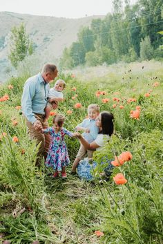 Poppies // Mantua, Utah // Family Picturesshandacall.com