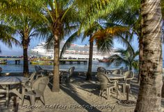 Coconut Palms playing peek-a-boo with Carnival Liberty