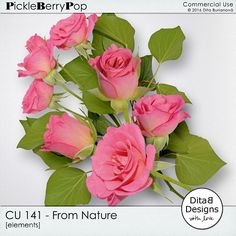CU 141 - From Nature By Dita B Designs