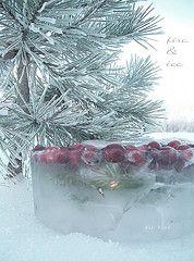 Frozen Cranberries in Ice