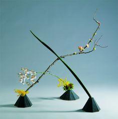 いけばな小原流五世家元 小原宏貴オフィシャルサイト Japanese Flowers, Green Flowers, Ikebana, Flower Arrangements, Floral, House, Ideas, Floral Arrangements, Home