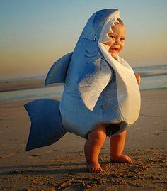Creative Shark Themed Stuffs