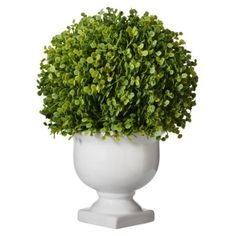 Threshold™ Baby Tears Topiary small is $9.99 and large is $12.99, in store only!