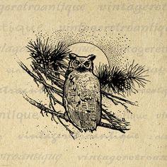 Printable Digital Owl Graphic Illustration by VintageRetroAntique