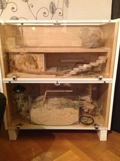 Our homemade cage for the gerbils