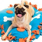 this would be so simple to make to make for the dogs!! other dyi dog bed ideas on this page
