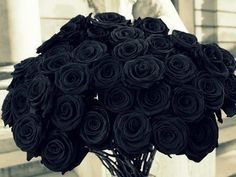 Love the deep red color. Picture Of Bouquet Red Roses Beautiful Black Love, Black Is Beautiful, Black And White, Color Black, Black Dark, Simply Beautiful, Black Flowers, Pretty Flowers, Rose Flowers