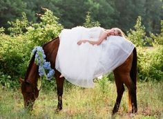 wedding photography with horse - Google Search