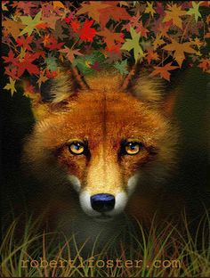 fox   red fox  fox art  print  from my painting LEAF by lewfoster, $15.00