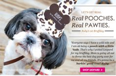 Leopard Print Dog Party #PoochPawty #DogBirthdayParty