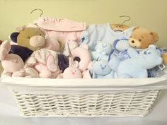 Luxury Baby Gift Basket for Twins