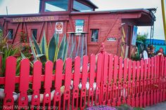 Exploring the quirky and cool attractions in Moss Landing   Travel Photo Discovery #monterey #Mosslanding #ElkhornSlew