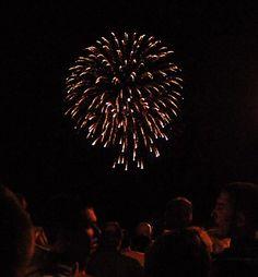 The 2012 Hyannis fireworks display as seen from Aselton Park on Ocean Street in Hyannis. Photo by Maggie Kulbokas. 4th Of July Fireworks, July 4th, Cape Cod, Dandelion, Flowers, Ocean, Display, Park, Street