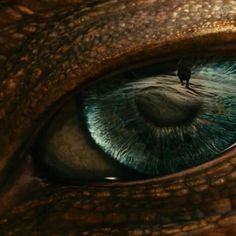 Dragon eye of the seas. Magical Creatures, Fantasy Creatures, Eyes Wallpaper, Dragons, Dragon's Lair, Dragon Images, Beautiful Dragon, Dragon Eye, Eye Photography