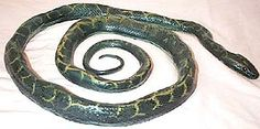 snakes sssss Halloween Supplies, Snakes, Reptiles, A Snake, Snake
