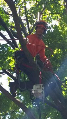 We get the job done right we have one of the best climbers in the city give your property a makeover call us for a free estimate 647-545-8733