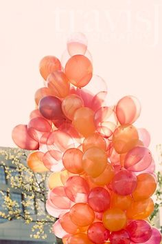 Coral and peach balloons | Photoshoot inspiration | Autumnal | Fall | love the big balloon cluster, use of color scheme (obviously in blues though) and use of solid and opaque balloons