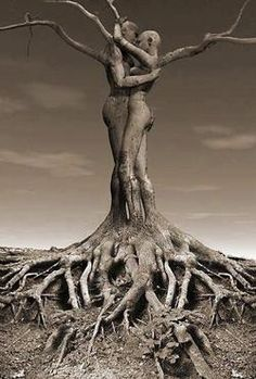 Roots of love!!