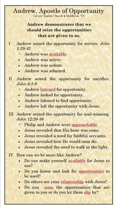 Apostle of Opportunity.jpg 1,425×2,550 pixels