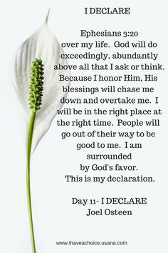 I Declare Day -11 by Joel Osteen