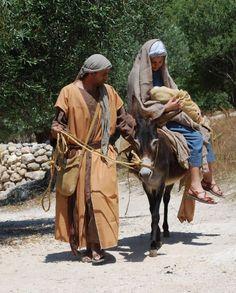 """""""Nazareth Village"""" è un'attrazione unica che replica biblico-tempo Nazareth e mostrare ai visitatori come questo villaggio, ed i suoi abitanti, sembrava al tempo di Cristo"""