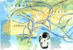 The world began from this great continent of Africa.
