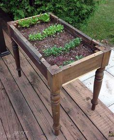 Urban Garden Design Repurposing an old table into a lettuce bed - Five Gardens Today Diy Garden, Garden Care, Garden Planters, Garden Projects, Garden Landscaping, Terrace Garden, Garden Crafts, Upcycled Garden, Diy Crafts
